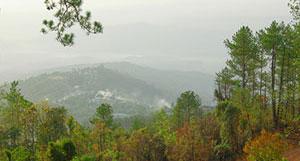 Chin hill